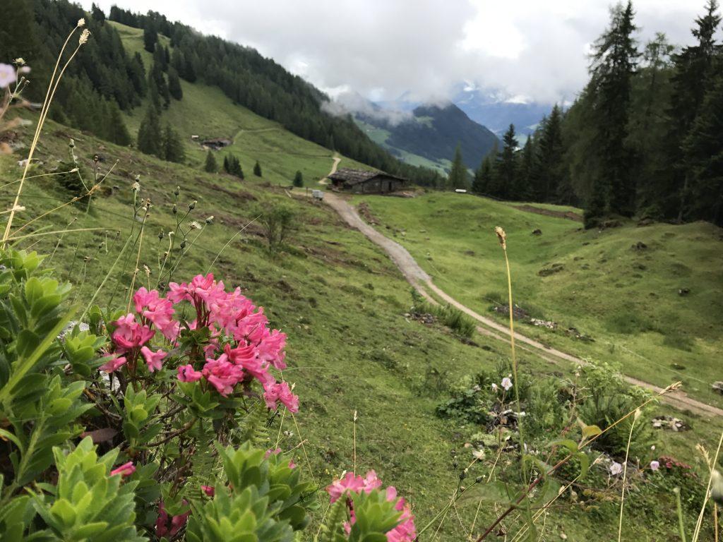 Reith i.A. – E-Bike Tour, Holzalm
